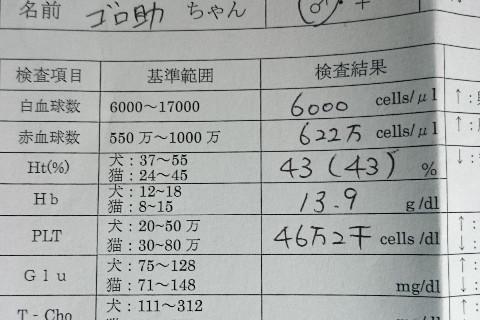 5180.jpg
