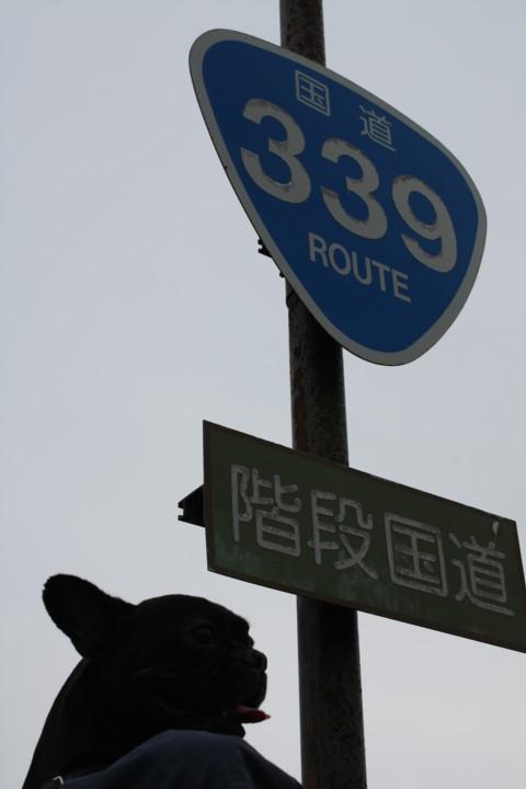 653.jpg
